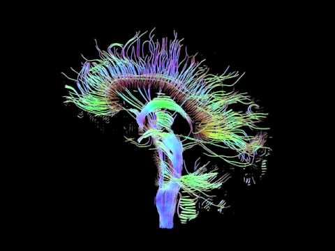 Delta Brainwaves 4,0 Hz -Enkephalin release for reduced stress - Pure Binaural Beats
