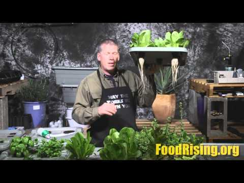 Health Ranger unveils Food Rising grow system at Health Freedom Expo in Naples, FL, Feb. 21 2015
