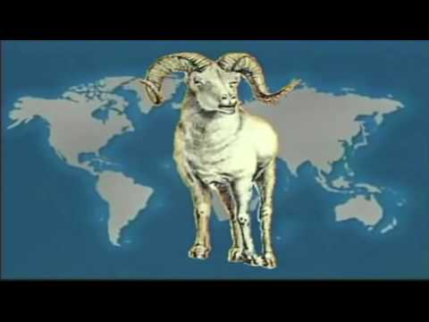 WE HAVE BEEN FOOLED - The Antichrist Is Already In Full Control Of Earth.
