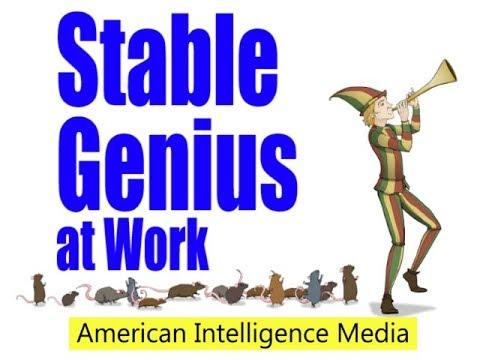 Stable Genius at Work