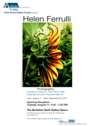 Artists Opening Reception: Fort Tryon Park Flowers in  Bloom
