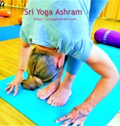 Affordable Yoga Retreats in India