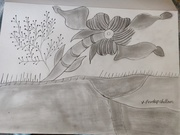 two flower with light sketch