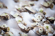 Farmhouse: National Oyster Day Celebration