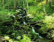cascade unnamed stream