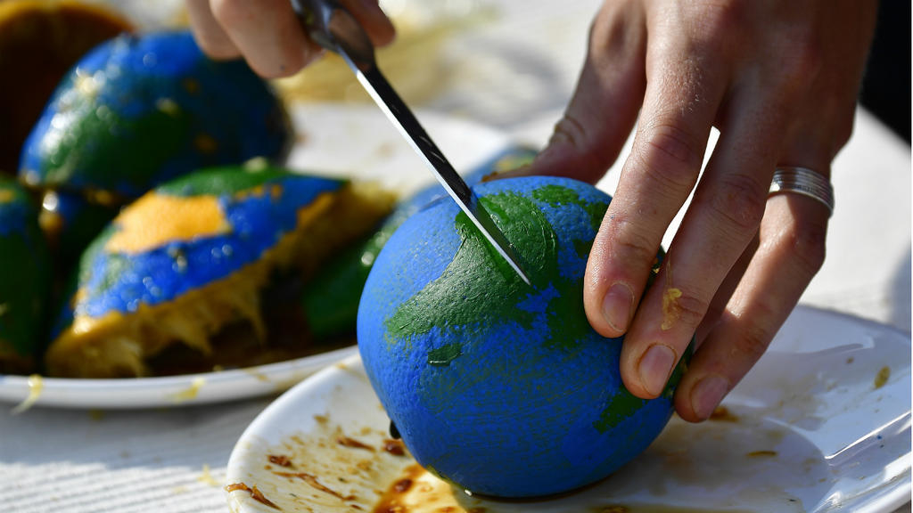 France 24: Earth Overshoot Day: Planet's 2019 resources 'budget' already spent