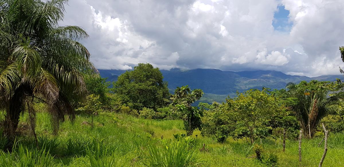 Panama : Une destination très naturelle
