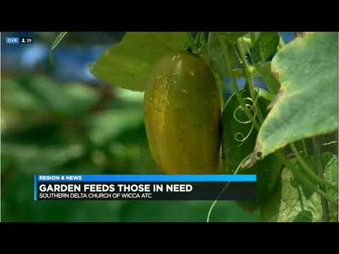 The Pagan Gardener on KAIT Channel 8 News