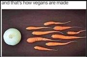 Vegan birth