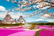 OSAKA - KYOTO - FUJI MOUNTAIN