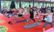 200 hour yoga teacher training program in Bangalore in November 2019