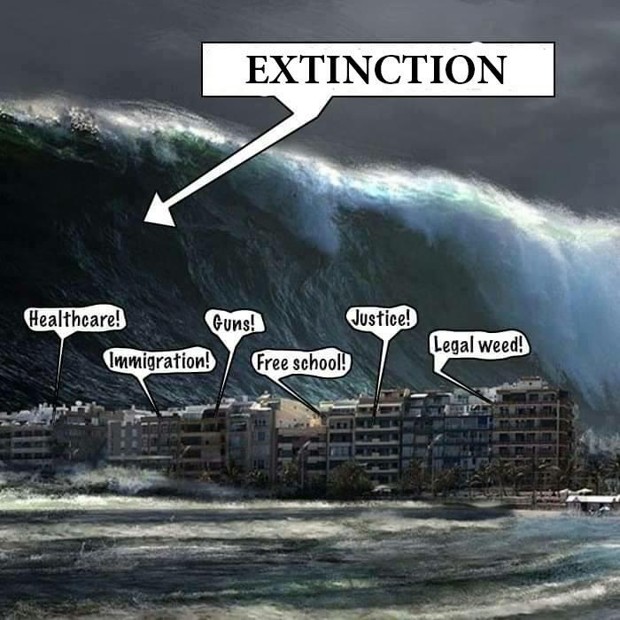 Extinction-is-a-big-wave-compared-to-everything-else