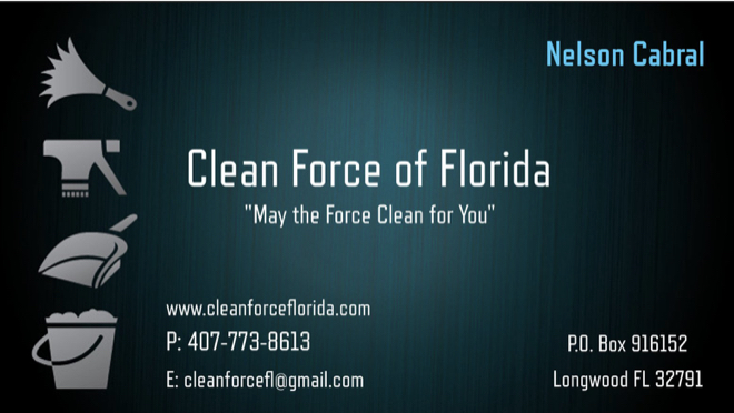 Clean Force Nelson