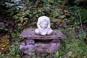 Buddha in the Silberwald