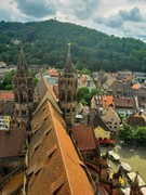 A View of Freiburg from the Top of the Cathedral