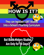 How Is it LGBT and Black History Studies Are Unequally Represented in our Schools