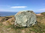 Stone of plenty