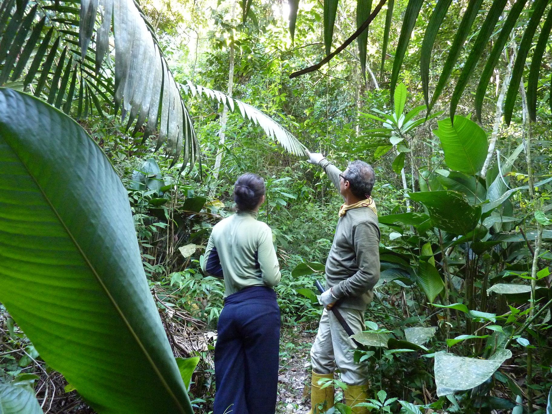 Tambo Ilusion - guided walk