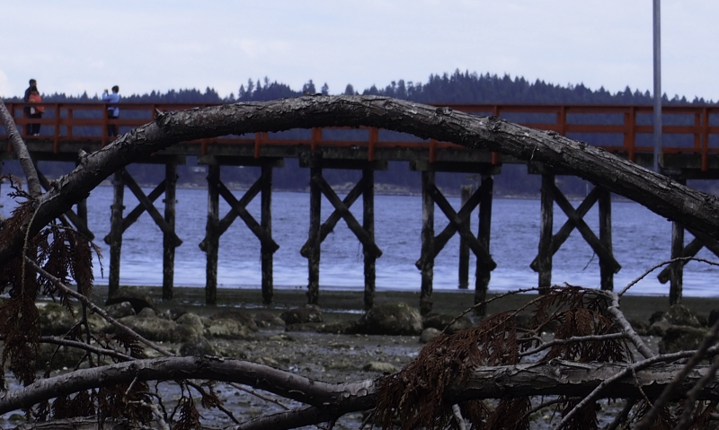 Fernwood arch