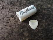 Mojobone w/ bone pick