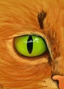 cats eye 2