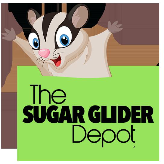 Sugar Glider Depot Logo