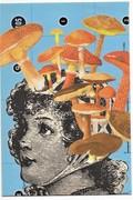 Fabulous fungi by Samantha Price
