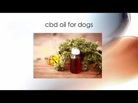 Cannabidiol   Makes Use Of And Also Profits