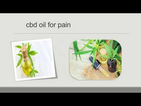 Organic Cbd Oil   The Master Of Oils
