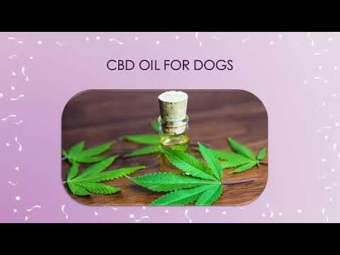 Source of your CBD