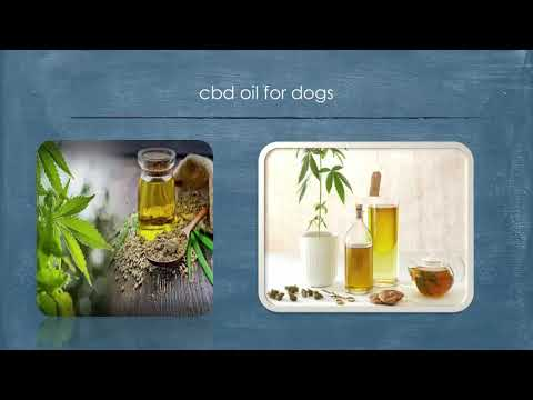 CBD oil is attributed with helping the body preserve