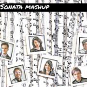 HSQ on Audubon: Sonata Mashup