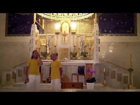 Aionigma: Synode