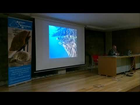 Conferencia Jordi Agusti: Los primeros poblamientos humanos del sureste de España.