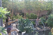 9/29/2019 OUTSIGHT Garden Performance w/ Artist Effy Grey