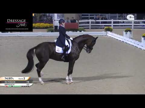 Brittany Fraser: All In Is STILL All Out! Recognizing An Unhappy Dressage Horse Part 3