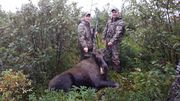 First moose for my buddy