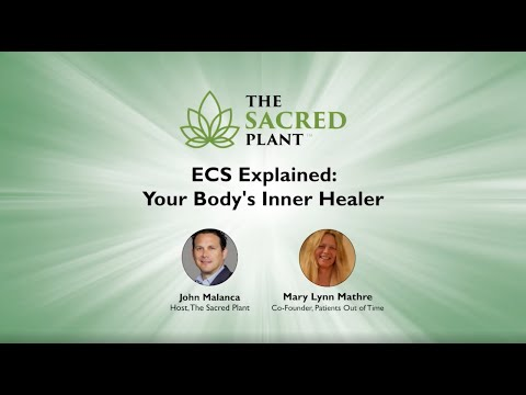 ECS Explained: Your Body's Inner Healer
