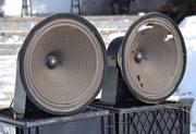 Jensen A12 Speakers