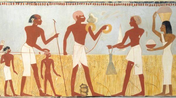 surveyors 1400 BC Egypt