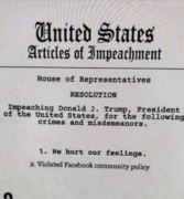 Dem's Laundry List of Impeachable Offenses by Trump