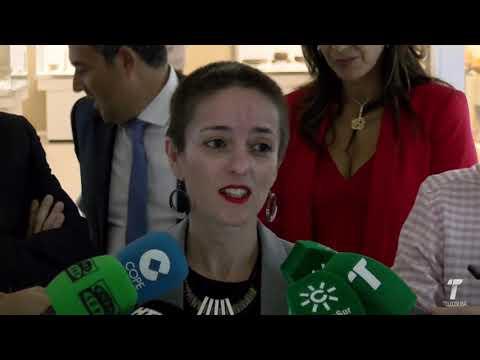 La estela diademada de Cañaveral ya se puede ver en el Museo de Huelva