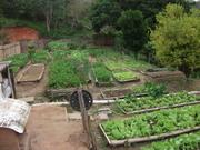 Hortas para agricultura familiar 2019