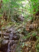 往石头河山里走