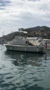 Lola at Catalina Island