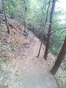 Spruce Flats Falls Trail