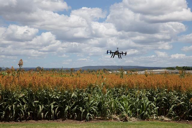 Digital Intelligence Driving Agricultural Innovation