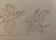 two flower1