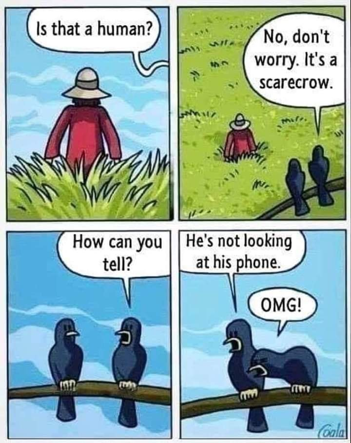 Signs of our times... Bird Language