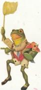 K Bsrnett's frog 23 Oct